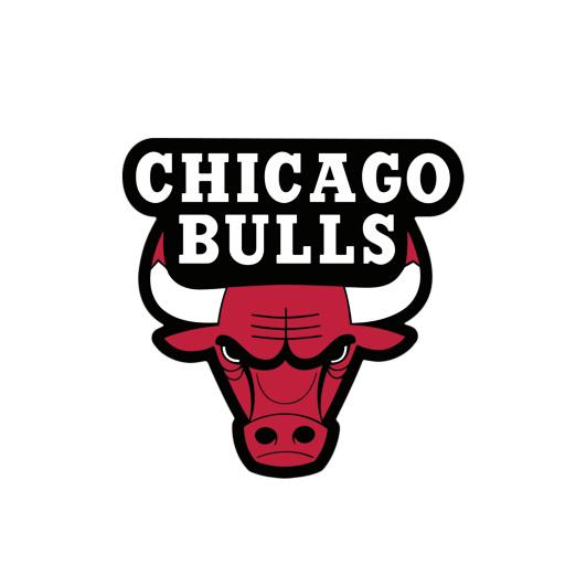 bull s
