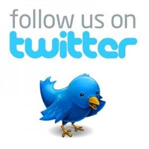 follow us on twitter-bird