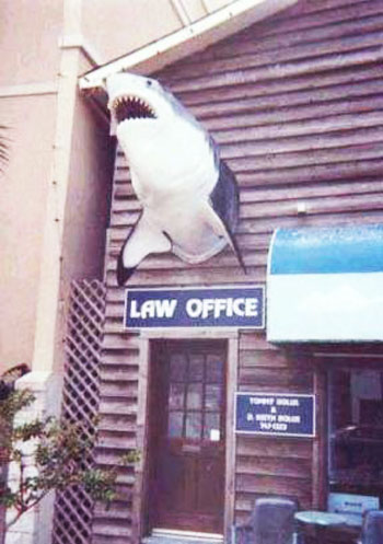 law firm trade name shark