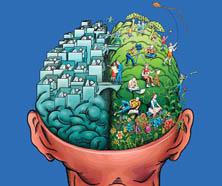brain halves 2