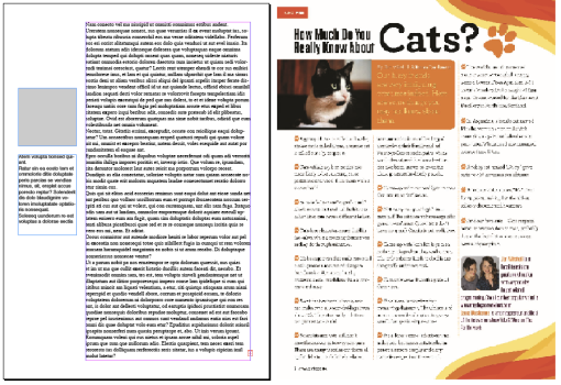 magazine column dull + cats. What makes a compelling magazine column? Hmmm, let's see. The truth probably lies somewhere between these two.