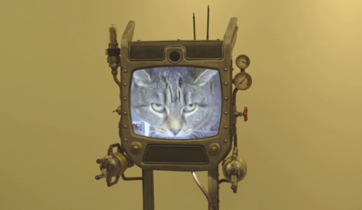beam replicator cat on TV