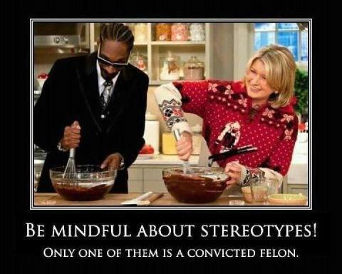 Snoop Martha Stewart sterotype