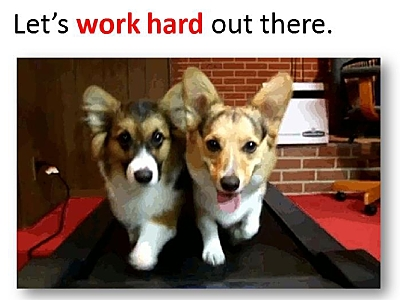 Don't work harder; work Corgi-er. Or something. Attendees had to listen to me (not my PowerPoint) to get my point.