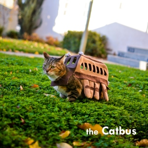 Why, yes, that is a Catbus. (Thank you, Mr. Miyazaki!)