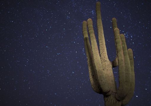 What value do dark skies hold? An Arizona Republic article examines the issue.