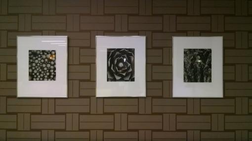 Conference room artwork, Dickinson Wright law firm, Phoenix, Ariz.