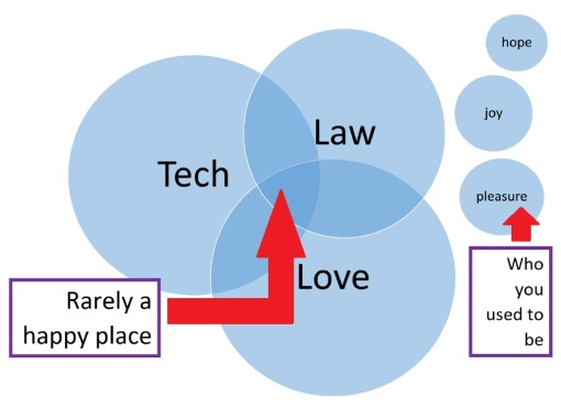 Very scientific Venn diagram catalogs the human condition. love technology law